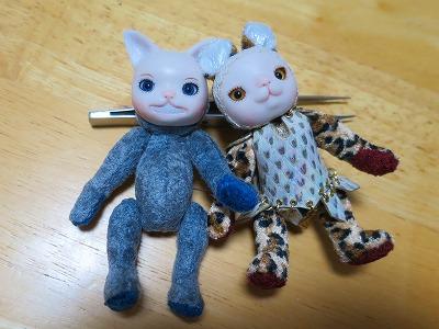 201623 チェシャネコと豹