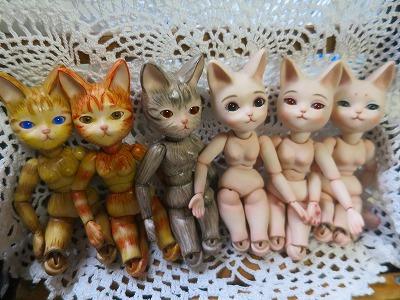猫町娘たち20161201