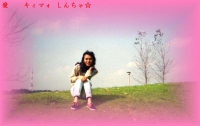 e台湾小姐5