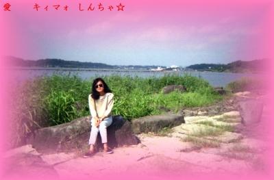 e台湾小姐6