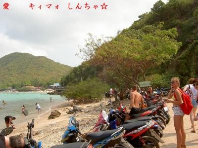 【FEB 2016】ラン島15