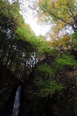 11・10大滝口 (55)