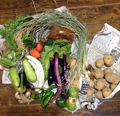 17種類の野菜