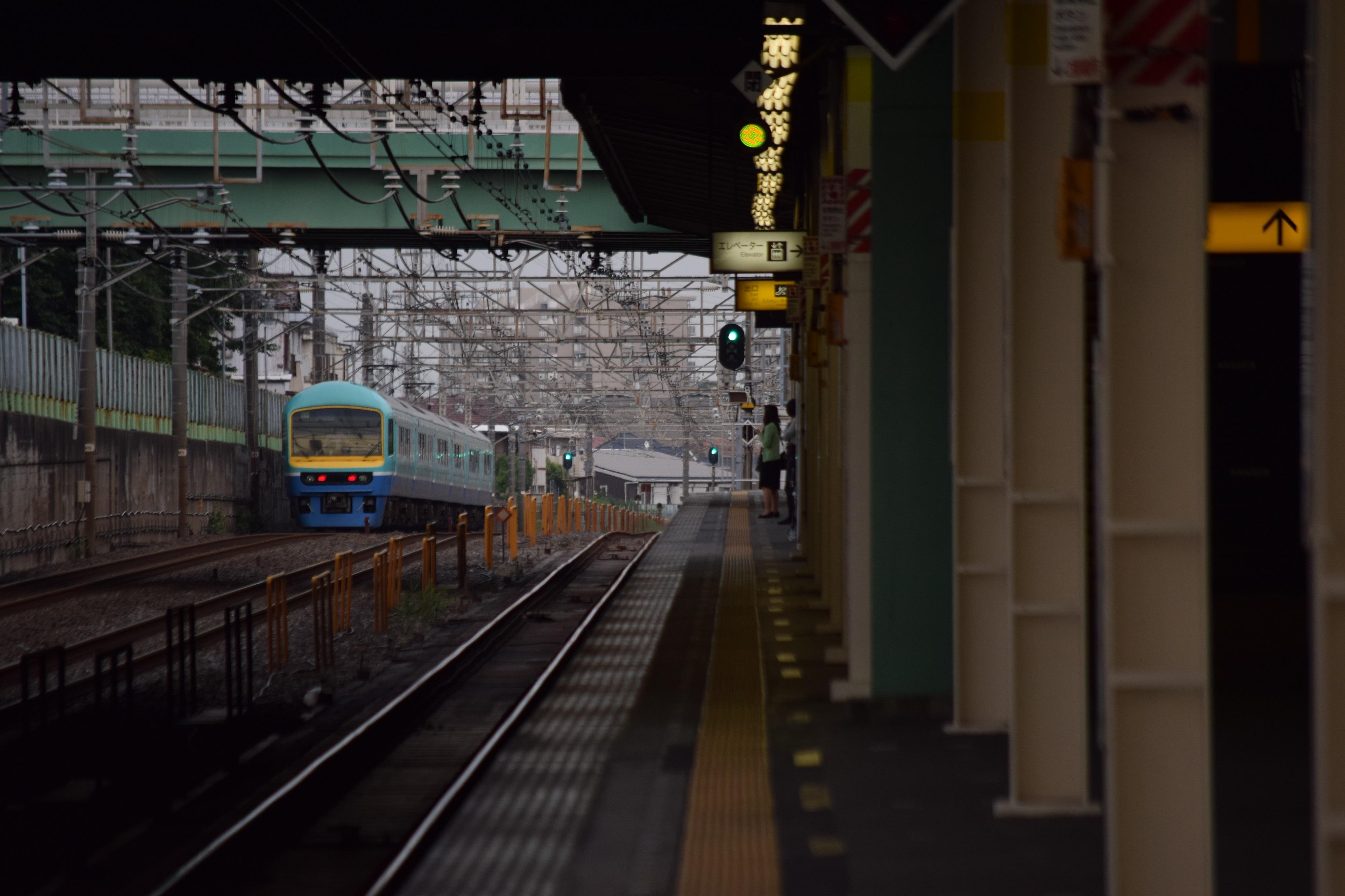 DSC_1064.jpg