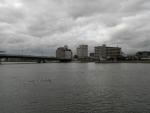20161128_宍道湖02