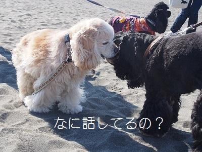 s-内緒話