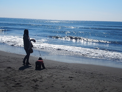 s-fizuちゃんと海