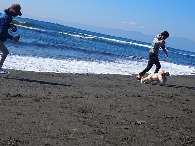 s-おじさんと海