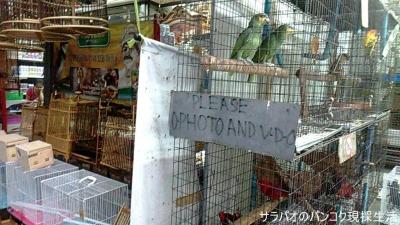 ジャトジャック・ウィークエンドマーケット