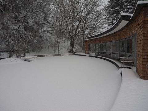 雪のリンク161124