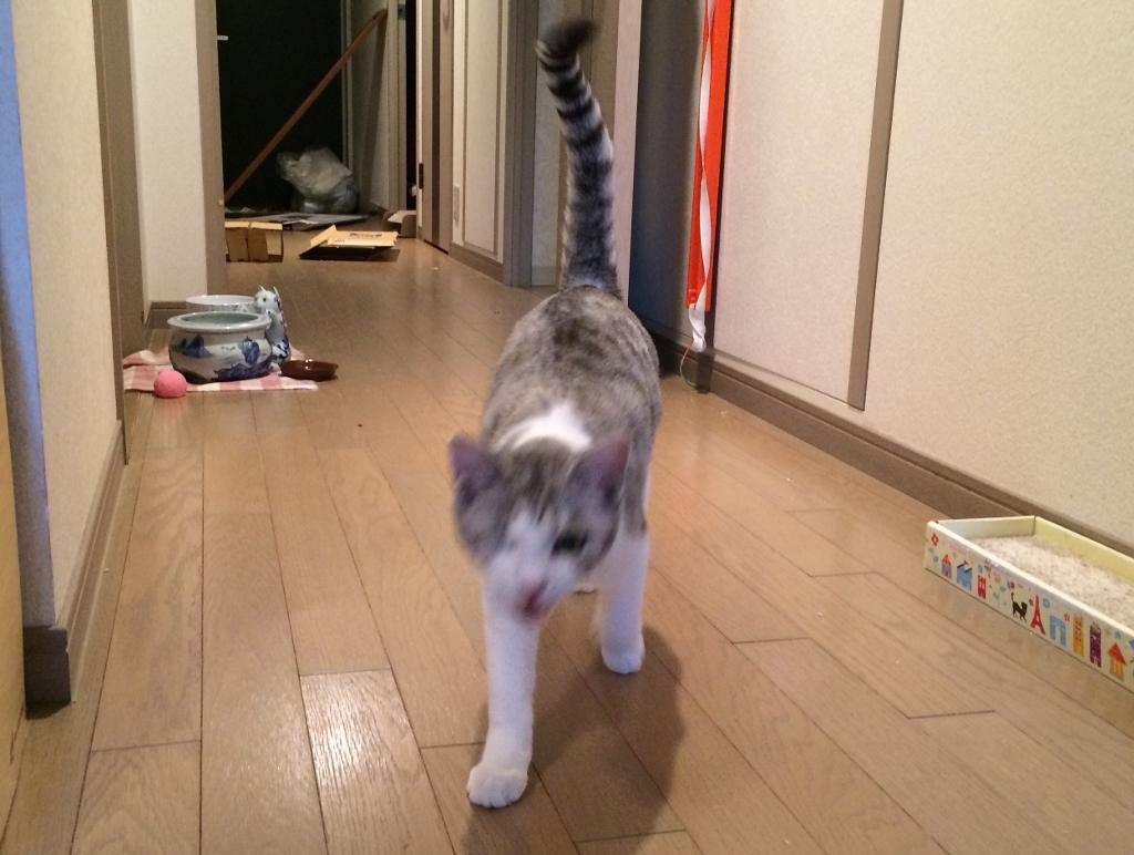 おせん&ター坊一緒に (14)