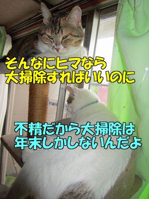 160710-07.jpg