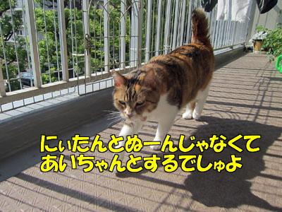 160724-07.jpg