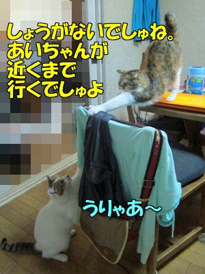 160809-03.jpg