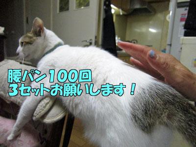 161004-05.jpg