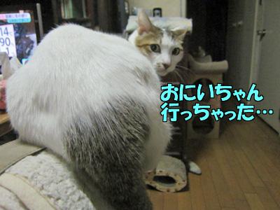 161101-11.jpg