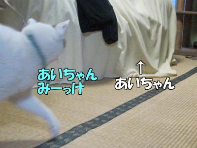161229-01.jpg