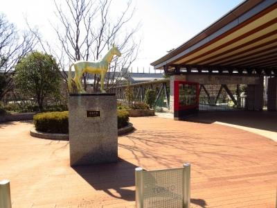 東京競馬場と黄金の馬