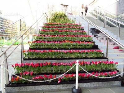 東京駅八重洲口チューリップの階段