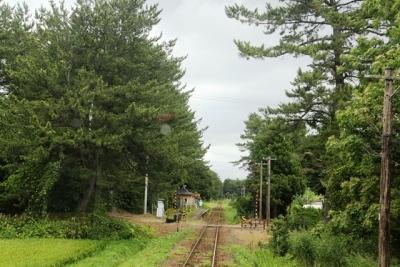 秘境駅毘沙門と鉄道林