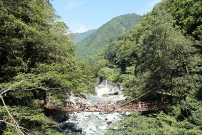 秘境祖谷のかずら橋