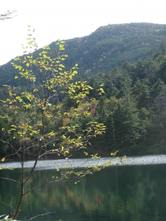 161004蓼科山~双子池 (34)s