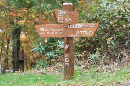 161022尼ヶ禿山 (8)s