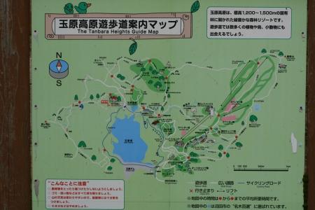 161022尼ヶ禿山 (29)s