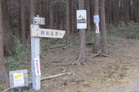 161030鍋割山~荒山 (1)s