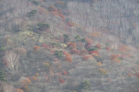 161030鍋割山~荒山 (16)s