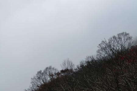 161030鍋割山~荒山 (26)s