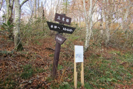 161106黒鼻山~北泉ヶ岳~泉ヶ岳 (25)s