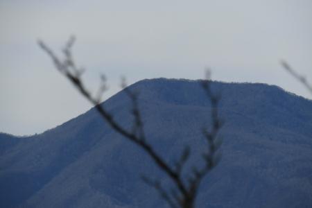131120中野山 (14)s
