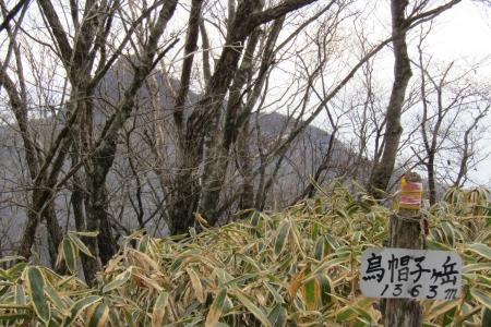 161204烏帽子ヶ岳~鬢櫛山 (6)s