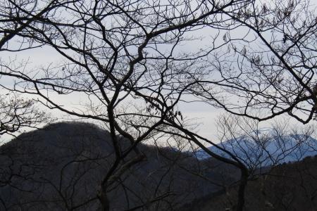 161204烏帽子ヶ岳~鬢櫛山 (11)s