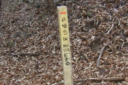 161210大猿山~白髪岩 (1)s
