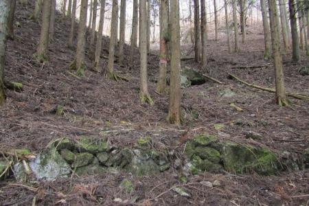 161210大猿山~白髪岩 (2)s