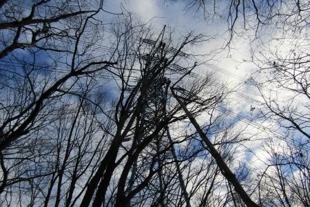 161210大猿山~白髪岩 (3)s