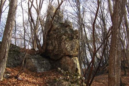 161210大猿山~白髪岩 (21)s