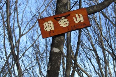 161210大猿山~白髪岩 (23)s