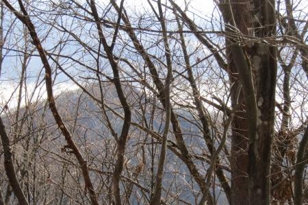 161210大猿山~白髪岩 (26)s