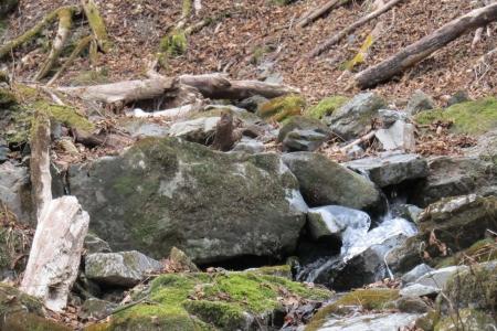 161210大猿山~白髪岩 (49)s