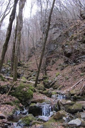161210大猿山~白髪岩 (55)s