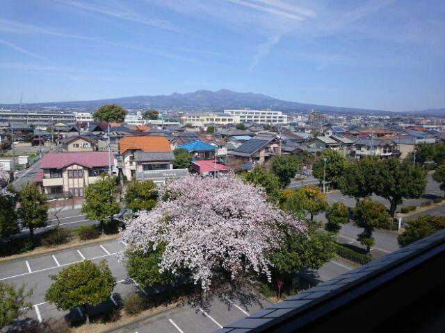 県立図書館からの眺望