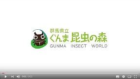 群馬県立ぐんま昆虫の森PR動画