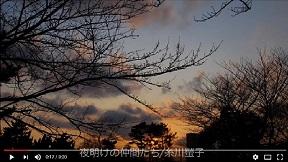 夜明けの仲間たち  糸川蛍子