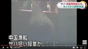 サバの漁獲量急増 日本が規制強化を提案へ