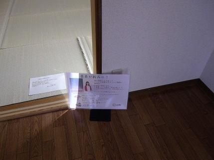 フルールA201畳表展示