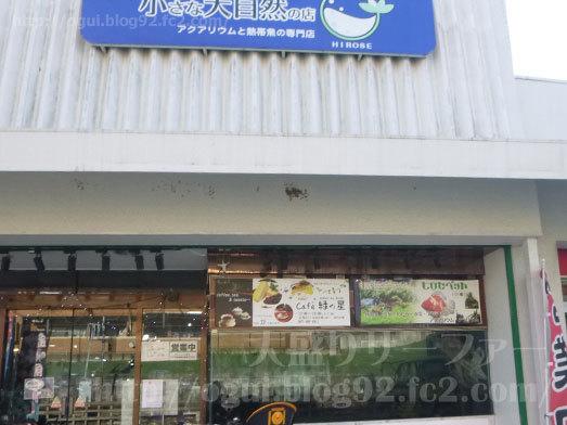 千葉県習志野市谷津のケーキ屋004