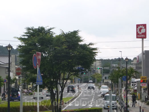 市原市姉ヶ崎でランチ003